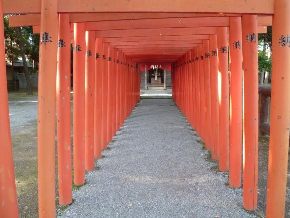 C'est vrai que l'allée de torii rouges, c'est beau. Première fois (comme Elphie) ou pas.