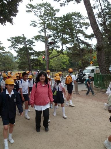 Un des innombrables groupes d'écoliers croisés tout au long de la journée à Nara.